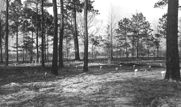 1941 African American Cemetery